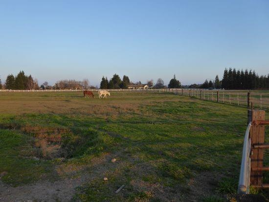 0 Gibbs Drive, Oakdale, CA 95361 (MLS #18069108) :: The Del Real Group