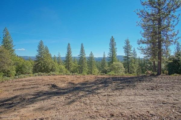 18580 You Bet Road, Grass Valley, CA 95945 (MLS #18072209) :: The Merlino Home Team