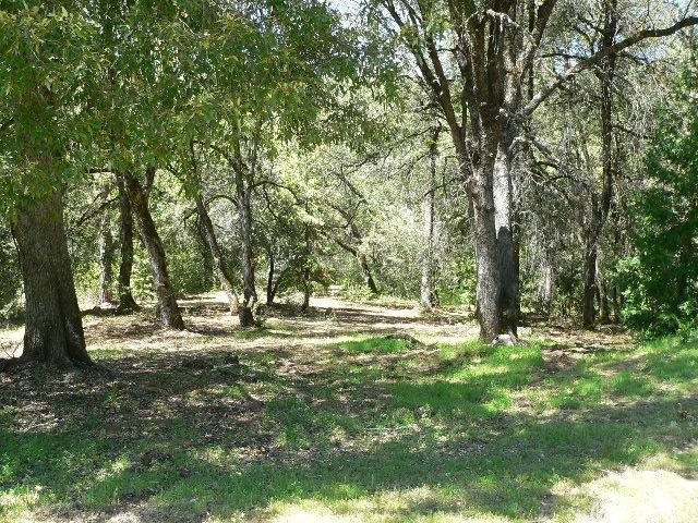 18351 View Circle, Fiddletown, CA 95629 (MLS #18072448) :: Keller Williams - Rachel Adams Group