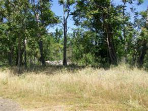0 Portion Of Lot 1 Springfield Road, Sonora, CA 95370 (MLS #18075933) :: Keller Williams Realty - Joanie Cowan