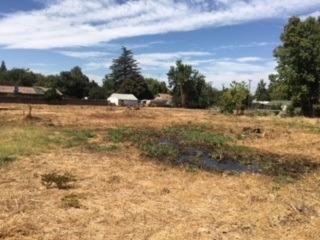 440 Garden Highway, Sacramento, CA 95833 (#18076996) :: Windermere Hulsey & Associates