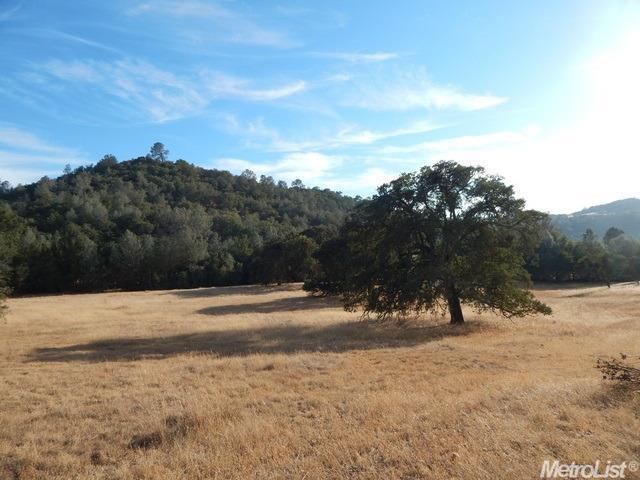 0 Hidden Mesa, Ione, CA 95640 (MLS #18078539) :: REMAX Executive