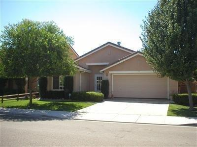 1158 Blue Heron Drive, Patterson, CA 95363 (MLS #18080654) :: The MacDonald Group at PMZ Real Estate