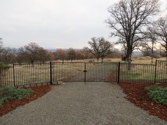 0 Forest Oak Court - Photo 1