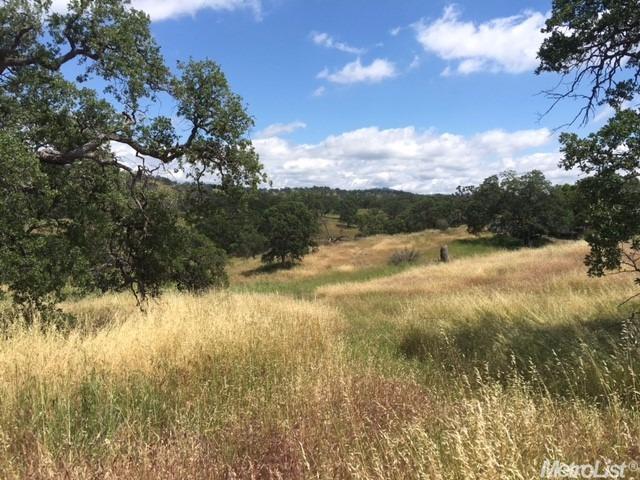 550 Pepito Drive, La Grange, CA 95329 (MLS #19009567) :: Dominic Brandon and Team