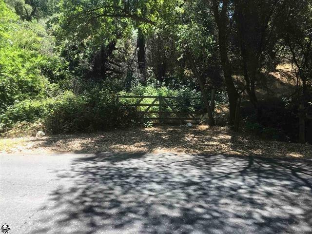 0 Shaws Flat Road, Sonora, CA 94370 (MLS #19011596) :: Dominic Brandon and Team