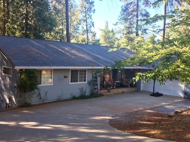 12825 Burnt Cedar Lane, Pine Grove, CA 95665 (MLS #19011939) :: Keller Williams - Rachel Adams Group