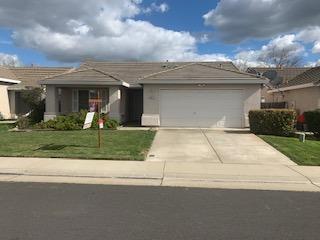 9047 New Age Court, Elk Grove, CA 95758 (MLS #19014479) :: Heidi Phong Real Estate Team