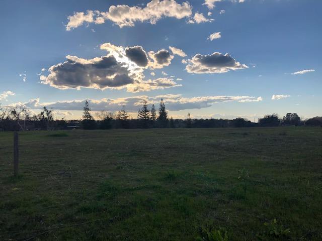 113 Mesa De Oro Circle, Sutter Creek, CA 95685 (MLS #19015051) :: REMAX Executive