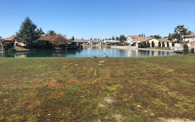 169 Crows Nest Court, Atwater, CA 95301 (MLS #19016787) :: Keller Williams - Rachel Adams Group