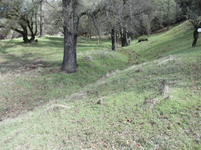 0 Unit 4-Lot 422 Pine Mountain Drive, Groveland, CA 95321 (MLS #19021671) :: Heidi Phong Real Estate Team