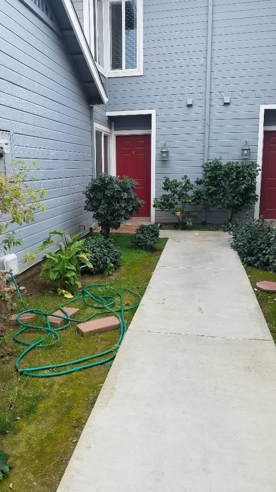 960 South Avenue, Gustine, CA 95322 (MLS #19022693) :: Keller Williams Realty