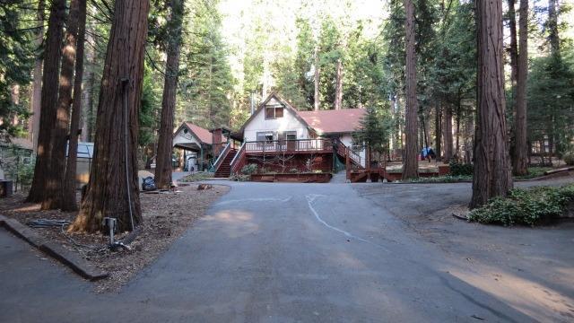 19675 Forest View Circle, Pioneer, CA 95666 (MLS #19022834) :: Keller Williams Realty