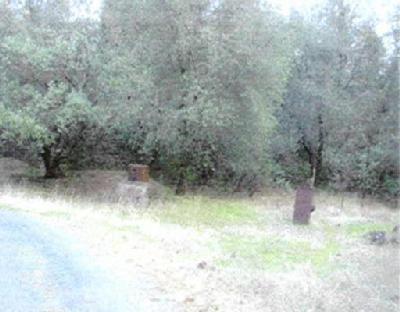 20 Americanflat Road, Fiddletown, CA 95629 (MLS #19023072) :: Heidi Phong Real Estate Team