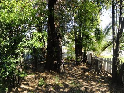 2412 Edison Avenue, Sacramento, CA 95821 (MLS #19024711) :: Keller Williams - Rachel Adams Group