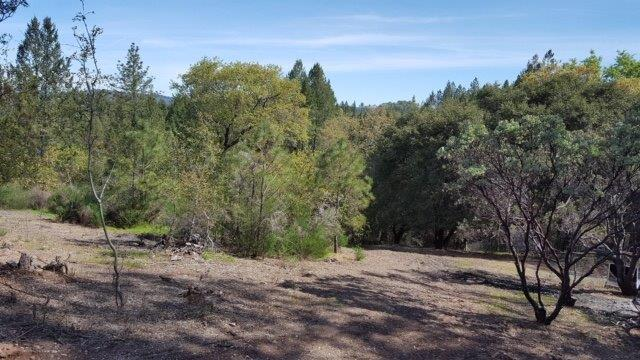 2709 Brushy Canyon Trail, Cool, CA 95614 (MLS #19026192) :: Folsom Realty