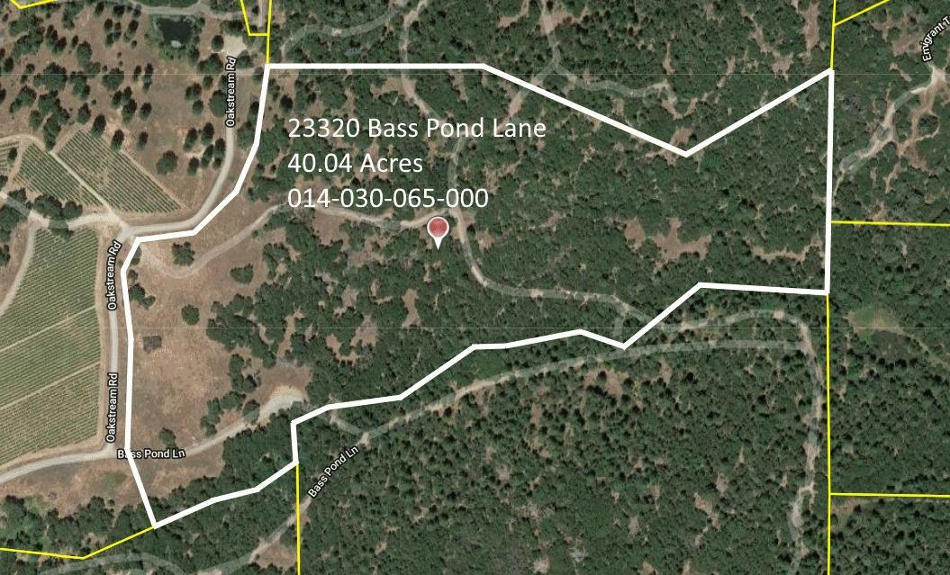 23320 Bass Pond Lane - Photo 1