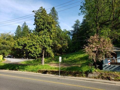 678 Main Street, Placerville, CA 95667 (MLS #19031581) :: Heidi Phong Real Estate Team