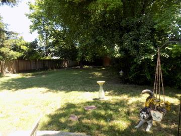 3630 E Country Club Lane, Sacramento, CA 95821 (MLS #19042849) :: The MacDonald Group at PMZ Real Estate