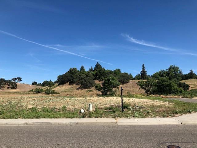 10102 Fox Borough Drive, Oakdale, CA 95361 (MLS #19046606) :: The MacDonald Group at PMZ Real Estate