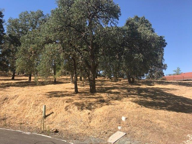 2756 Teal Court, Valley Springs, CA 95252 (MLS #19050616) :: Heidi Phong Real Estate Team