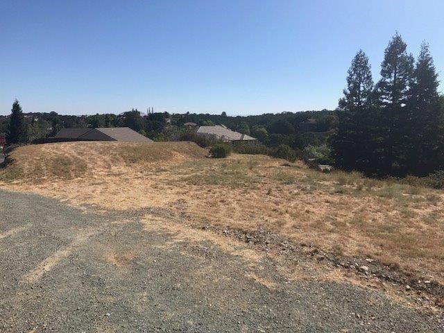 2681 Shadow, Valley Springs, CA 95252 (MLS #19050620) :: Heidi Phong Real Estate Team