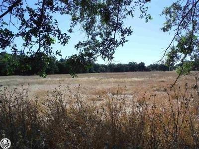 0 Jamestown Rd, Sonora, CA 95370 (MLS #19051222) :: Heidi Phong Real Estate Team