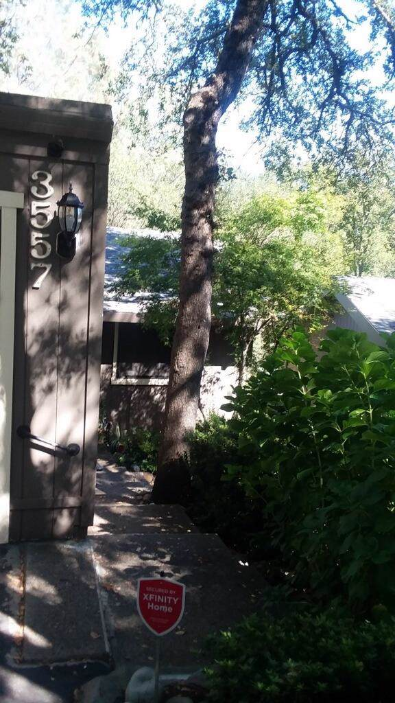 3557 Montclair Road, Cameron Park, CA 95682 (MLS #19066342) :: The MacDonald Group at PMZ Real Estate
