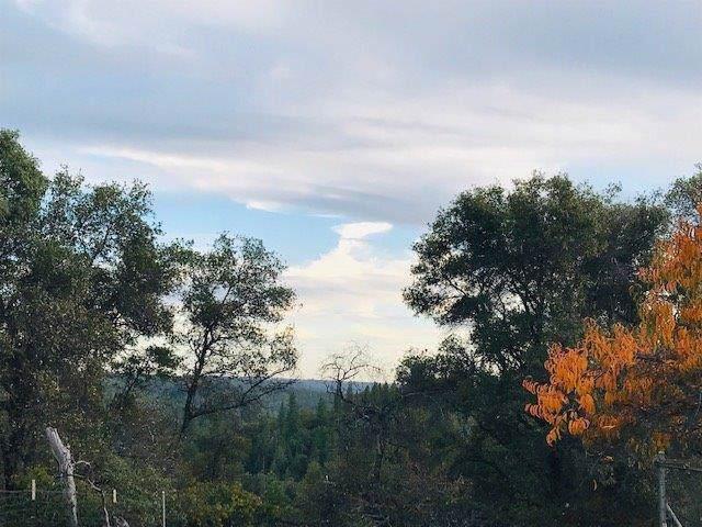 4400 Coyote Ridge Road - Photo 1