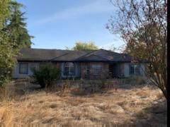 12242 Harness Lane, Galt, CA 95632 (MLS #19071416) :: The MacDonald Group at PMZ Real Estate
