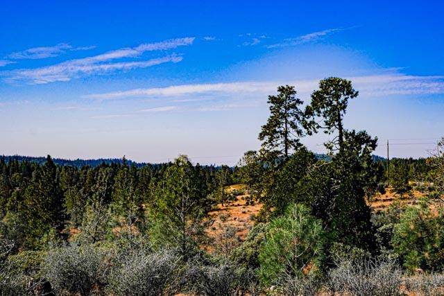 Nevada City, CA 95959 :: Keller Williams Realty