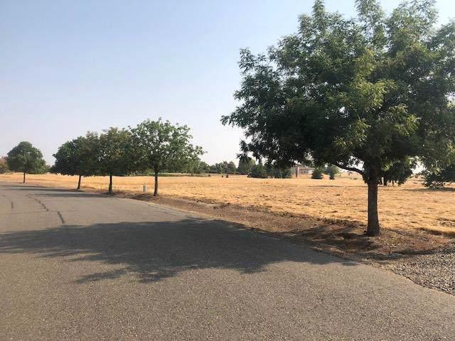 10673 Birch Ranch Drive, Sacramento, CA 95830 (MLS #19072198) :: Dominic Brandon and Team
