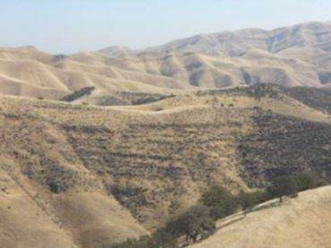 8500 Del Puerto Canyon Road - Photo 1