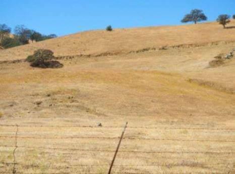 9000 Del Puerto Canyon Road, Patterson, CA 95363 (MLS #19074278) :: Keller Williams - Rachel Adams Group