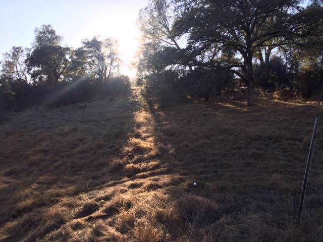 3255 Maravilla Drive, Coulterville, CA 95311 (MLS #19076511) :: Folsom Realty