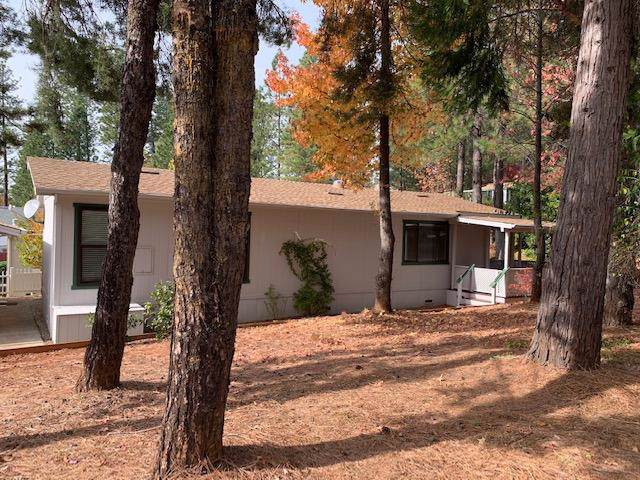 10296 Timberland Drive, Grass Valley, CA 95949 (MLS #19077574) :: Dominic Brandon and Team