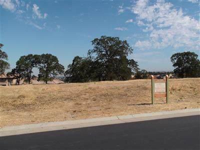 3451 Vista De Madera, Lincoln, CA 95648 (MLS #19078181) :: Heidi Phong Real Estate Team