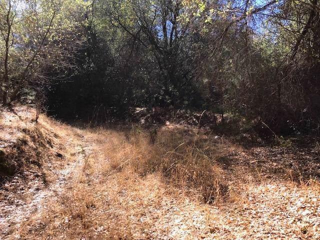 7 Pleasant Valley Road, Diamond Springs, CA 95619 (MLS #19079970) :: Deb Brittan Team