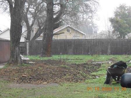 750 S Oro Avenue, Stockton, CA 95215 (MLS #20003379) :: Keller Williams - Rachel Adams Group