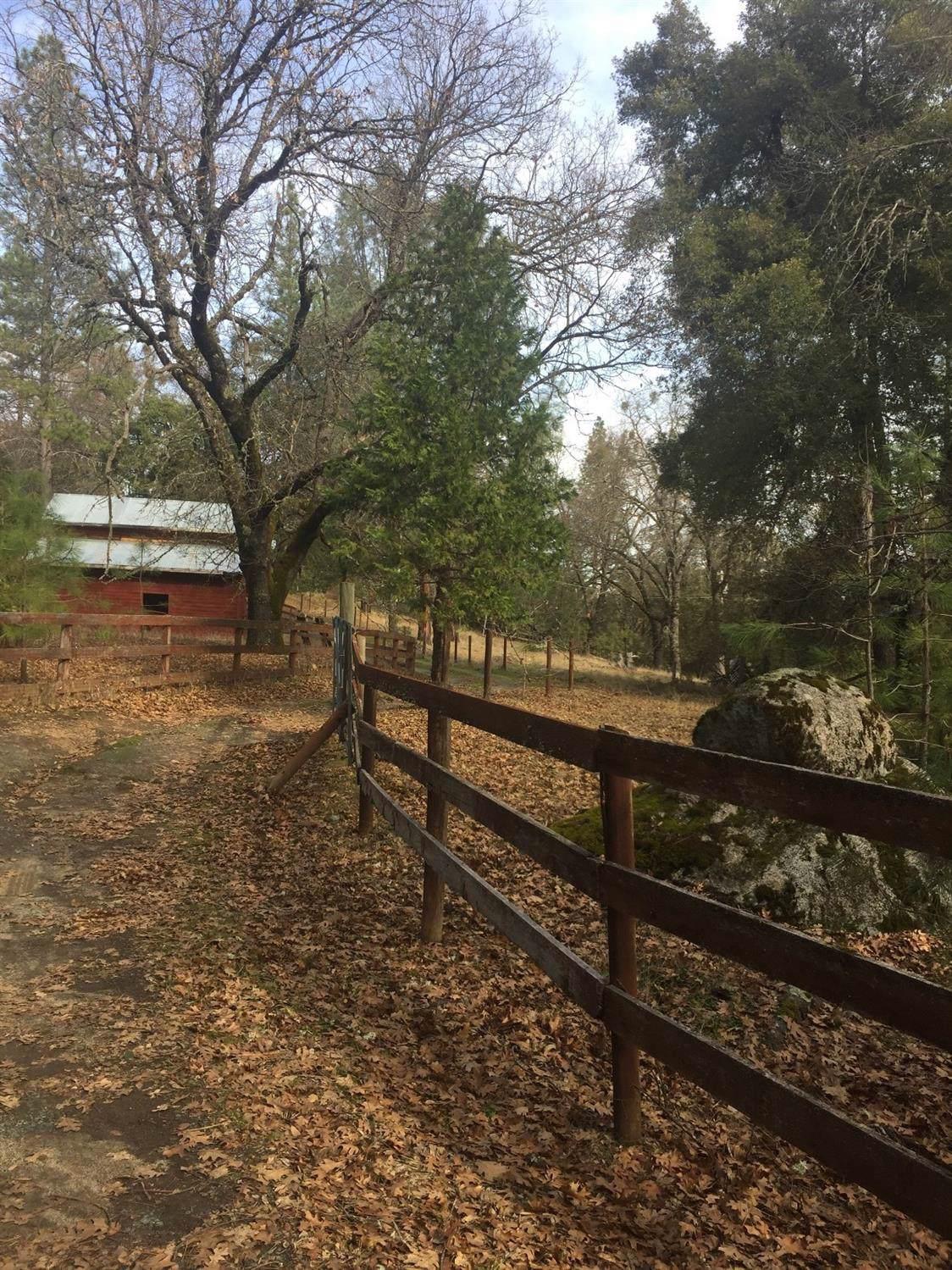3361 Omo Ranch Road - Photo 1