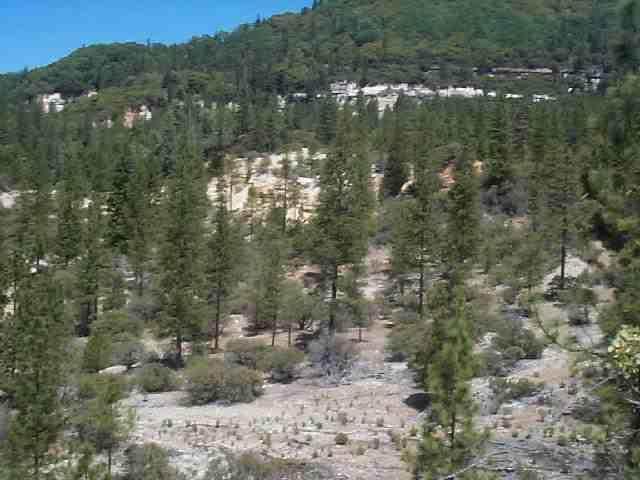 20881 Chalk Bluff Road, Nevada City, CA 95959 (MLS #20009579) :: Keller Williams - Rachel Adams Group