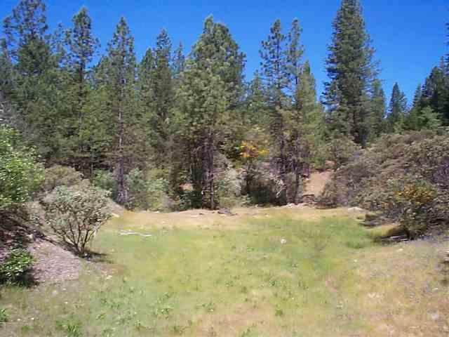 21211 Chalk Bluff Road, Grass Valley, CA 95945 (MLS #20009586) :: Keller Williams - Rachel Adams Group