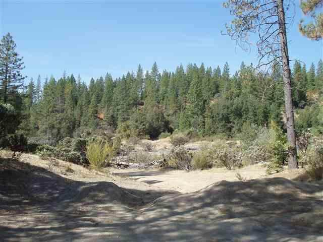10101 Guy Blue Road, Nevada City, CA 95959 (MLS #20009591) :: Keller Williams - Rachel Adams Group