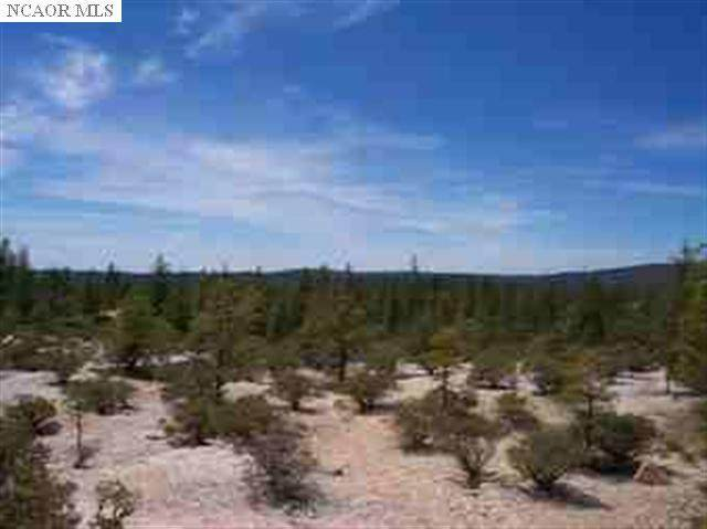 18664 Red Dog Road, Nevada City, CA 95959 (MLS #20009594) :: Keller Williams - Rachel Adams Group