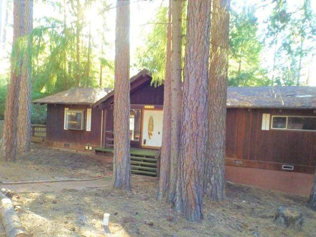 25215 Sugar Pine Drive, Pioneer, CA 95666 (MLS #20016884) :: REMAX Executive