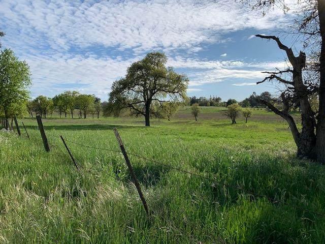 0 Magos Road, Wilton, CA 95693 (MLS #20018510) :: The MacDonald Group at PMZ Real Estate