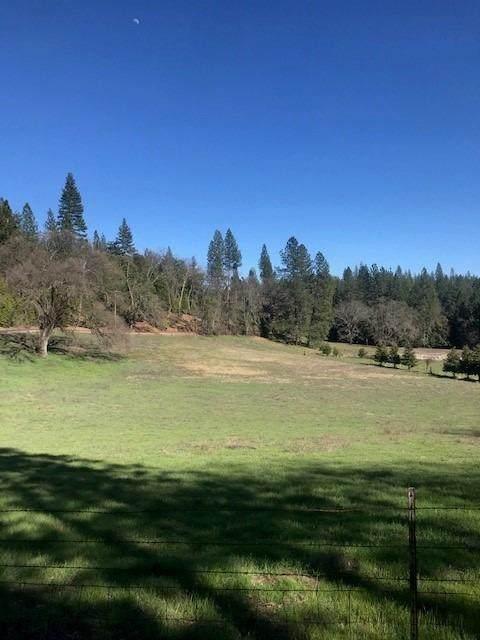 14400 Pine Grove Volcano Road, Pine Grove, CA 95665 (MLS #20019981) :: Deb Brittan Team