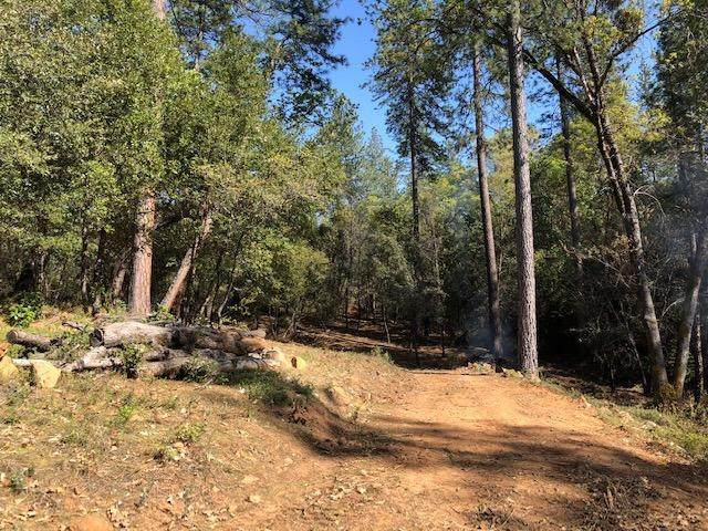 2650 Swansboro Road, Placerville, CA 95667 (MLS #20024873) :: Paul Lopez Real Estate