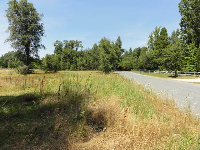 18121 Lasso Loop, Penn Valley, CA 95946 (MLS #20032425) :: Heidi Phong Real Estate Team