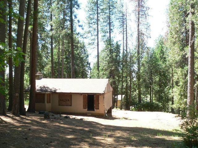 26228 Buckhorn Ridge Road, Pioneer, CA 95666 (MLS #20040032) :: Heidi Phong Real Estate Team